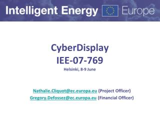 CyberDisplay IEE-07-769 Helsinki, 8-9 June