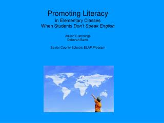 Promoting Literacy