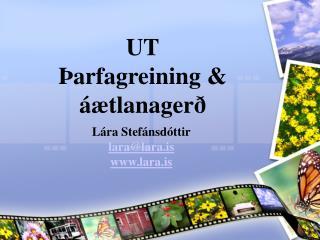 UT Þarfagreining & áætlanagerð