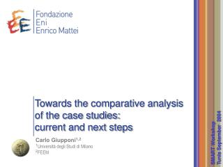 Towards the comparative analysis of the case studies:  current and next steps