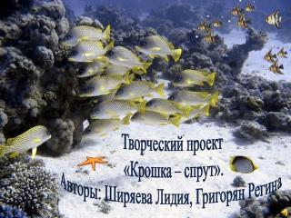 Творческий проект  «Крошка – спрут». Авторы: Ширяева Лидия, Григорян Регина.
