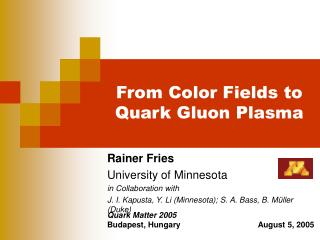 From Color Fields to Quark Gluon Plasma