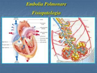 Embolia Polmonare Fisiopatologia