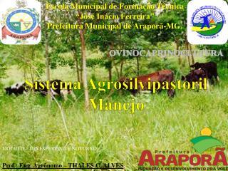 Sistema Agrosilvipastoril Manejo
