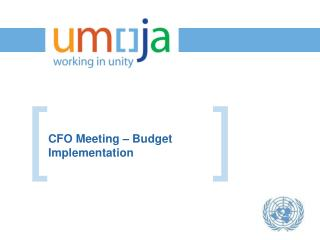 CFO Meeting – Budget Implementation