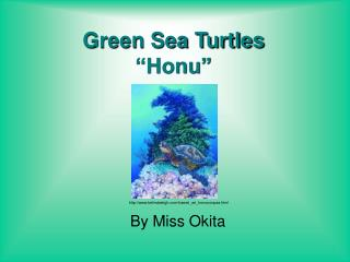 "Green Sea Turtles ""Honu"""