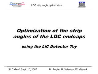 Optimization of the strip angles of the LDC endcaps using the LiC Detector Toy