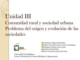 Unidad III Comunidad rural y sociedad urbana Problema del origen y evolución de las sociedades