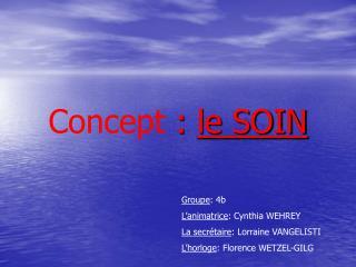 Concept :  le SOIN