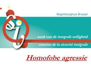 Homofobe agressie