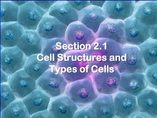 Section 2.1 Cell Structures and Types of Cells