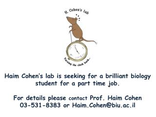 Haim Cohen's lab is seeking for a brilliant biology student for a part time job.