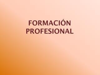 FORMACI�N PROFESIONAL