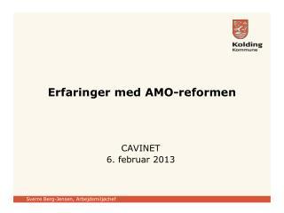 Erfaringer med  AMO-reformen