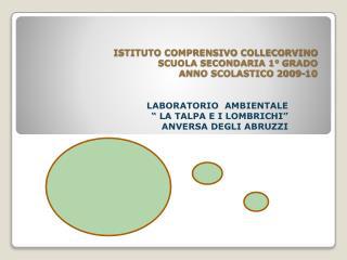 ISTITUTO COMPRENSIVO COLLECORVINO SCUOLA SECONDARIA 1° GRADO ANNO SCOLASTICO 2009-10