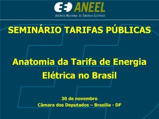 SEMINÁRIO TARIFAS PÚBLICAS Anatomia da Tarifa de Energia Elétrica no Brasil 30 de novembro