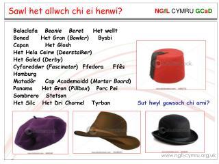 Sut hwyl gawsoch chi arni?