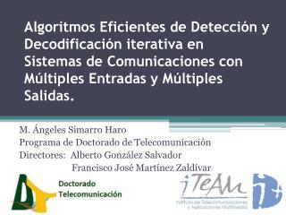 M. Ángeles  Simarro  Haro Programa de Doctorado de Telecomunicación