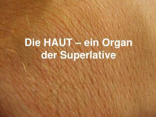 Die HAUT � ein Organ der Superlative