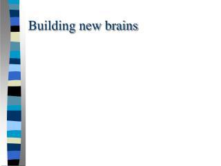 Building new brains