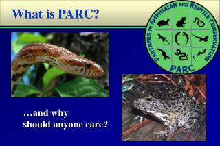 What is PARC?