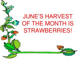 JUNE'S HARVEST OF THE MONTH IS STRAWBERRIES!
