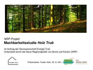NRP-Projekt Machbarkeitsstudie  Holz Trub Im Auftrag der Genossenschaft Energie Trub