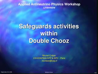 Safeguards activities within Double Chooz