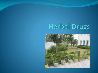Herbal Drugs