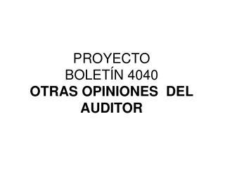 PROYECTO  BOLET�N 4040 OTRAS OPINIONES  DEL AUDITOR