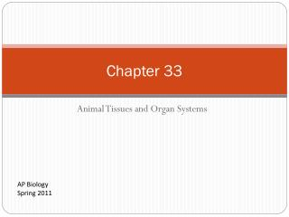 Animal Tissues and Organ Systems