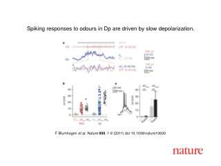 F Blumhagen  et al .  Nature 000 ,  1 - 6  (2011) doi:10.1038/nature10633
