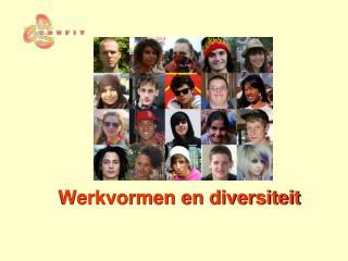Werkvormen en diversiteit