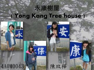 永康 樹 屋 ( Yong Kang Tree house  )
