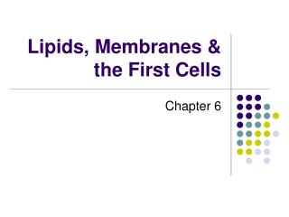 Lipids, Membranes  the First Cells