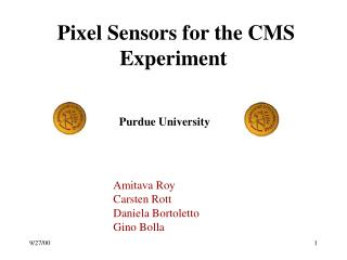 Pixel Sensors for the CMS Experiment
