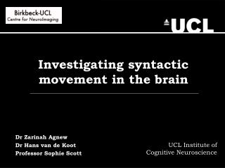 Investigating syntactic movement in the brain