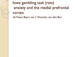 Iowa gambling task (rats)  anxiety and the medial prefrontal cortex