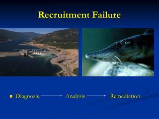Recruitment Failure