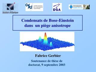 Condensats de Bose-Einstein dans  un pi ge anisotrope