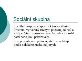 Sociální skupina