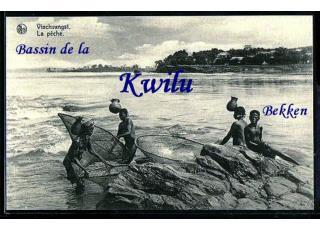 Bass Kwil(1)