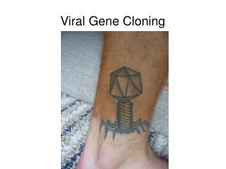 Viral Gene Cloning