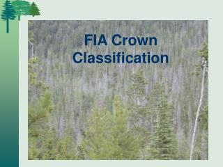 FIA Crown Classification