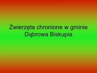 Zwierzęta chronione w gminie Dąbrowa Biskupia