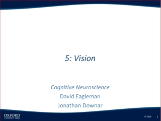 Cellular Neurosciences III.  Neurotransmitters