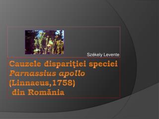C au zele dispari ţ iei speciei  Parnassius apollo  (Linnaeus,1758)  din Rom ă nia