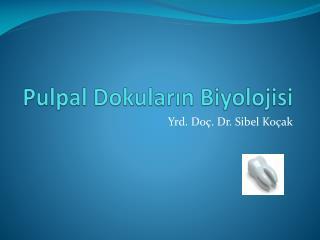 Pulpal  Dokuların Biyolojisi