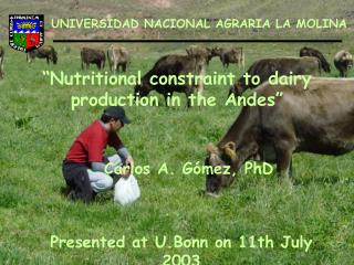"""""""Nutritional constraint to dairy production in the Andes"""""""