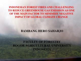 BAMBANG HERO SAHARJO